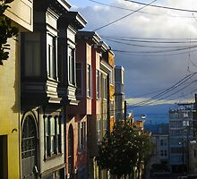 Telegraph Hill Alley by David Denny
