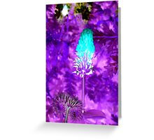 Light Effect -25 Greeting Card