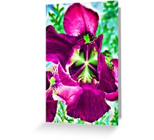 Light Effect -29 Greeting Card