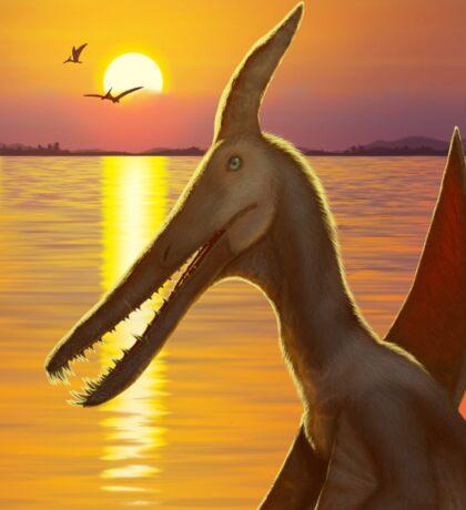 Pterosaur Sunset - Ludodacylus Sticker