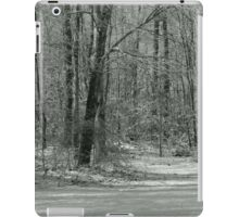 Winter Stillness iPad Case/Skin