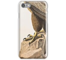 John James Audubon - The Bird of Washington, or Great American Sea Eagle  Falco washingtoniensis Male 1827  iPhone Case/Skin