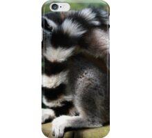 Sleeping iPhone Case/Skin