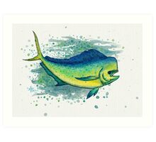 Mahi Mahi Splash ~ Watercolor Art Print