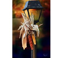 Fall Is Coming Photographic Print
