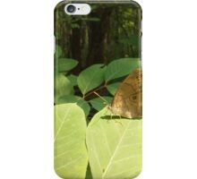 Being a Butterfly iPhone Case/Skin