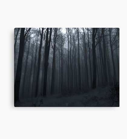 Whisper of the Trees Canvas Print