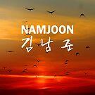 Namjoon (Rap Monster) Phone Case - Birds by ReadingFever