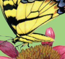 Swallowtail and Coneflower Sticker