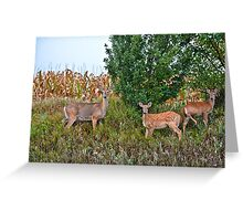 Deer Family Greeting Card
