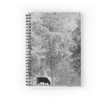 Tall Cedars And Black Bull Spiral Notebook