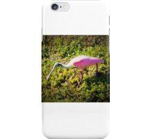 Roseate Spoonbill in hunting mode iPhone Case/Skin