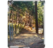 Pleasant Valley: Late Afternoon iPad Case/Skin