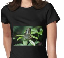 Brown Clipper - Parthenos Sylvia Womens Fitted T-Shirt