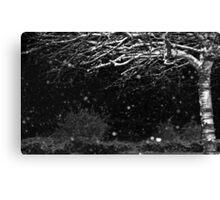 Black and White Winter Canvas Print