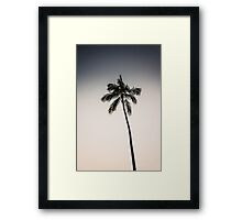 palm tree ver.charcoal Framed Print