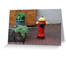 Quebec Urban Still Life Greeting Card