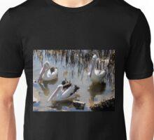 Waiting for a Feed, Nambucca Heads, NSW, Australia. Unisex T-Shirt