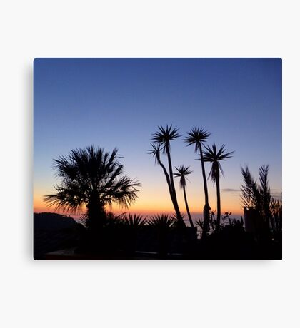 Majorcan Palms At Sunset Canvas Print
