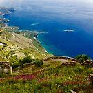 Amalfi View by Barbara  Brown