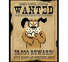 Duck Hunt Funny Games Photographic Print