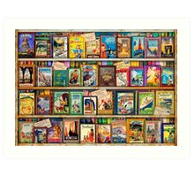 Travel Guide Book Shelf Art Print