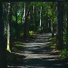Trail Through the Forest by glink