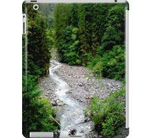 Vivid Forest iPad Case/Skin