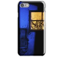 25.1.2016: Snowy Branches Behind the Window iPhone Case/Skin