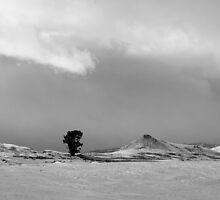 Prairie Winter by Jeffrey Ralph