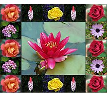 Floral Collage with Water Lily and Roses Photographic Print