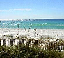 Beach On a Cool Morning by AuntDot