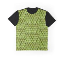 Delicious Watermelons Graphic T-Shirt