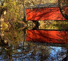 Red Clay Creek by cclaude
