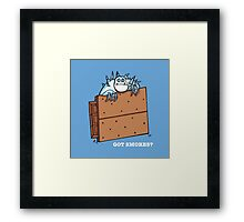 Got Smores? Framed Print