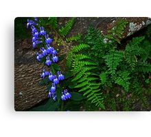Blue Flowers, Fern, Rock Canvas Print