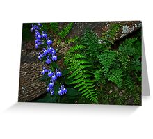 Blue Flowers, Fern, Rock Greeting Card