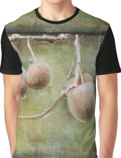 Kiwi Fruit Graphic T-Shirt