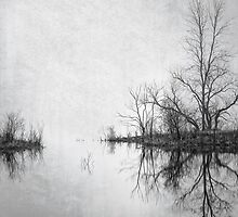 Seeing Double by April Koehler