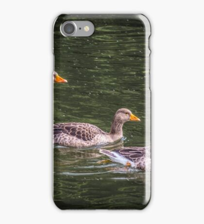 Three young birds on the river iPhone Case/Skin