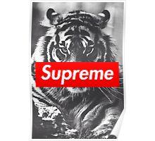Supreme tiger Poster