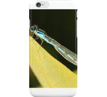 Blue Damsel iPhone Case/Skin