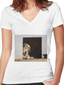 A dogs life Women's Fitted V-Neck T-Shirt