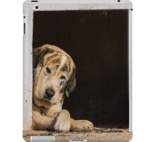 A dogs life iPad Case/Skin