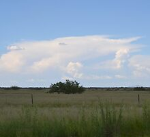 Valley view towards Tombstone Az. - Monsoons by Ann  Warrenton