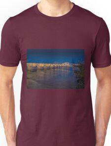 The Roman bridge at Cordoba, Spain Unisex T-Shirt
