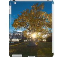 Autumn Light iPad Case/Skin