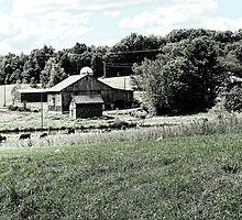 Typical Farm Setting by vigor
