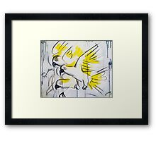 The Squawkers  Framed Print