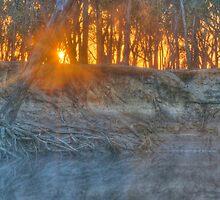 Foggy Goulburn Sunrise by Thomas Stayner